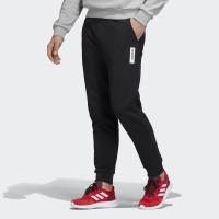Штани чоловічі Adidas BRILLIANT BASICS EI4619