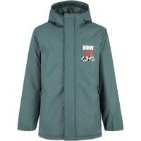 Куртка утеплена для хлопчиків Demix 111037